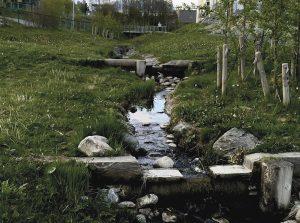 Overvannsbekk ved Akkebakke i Trondheim