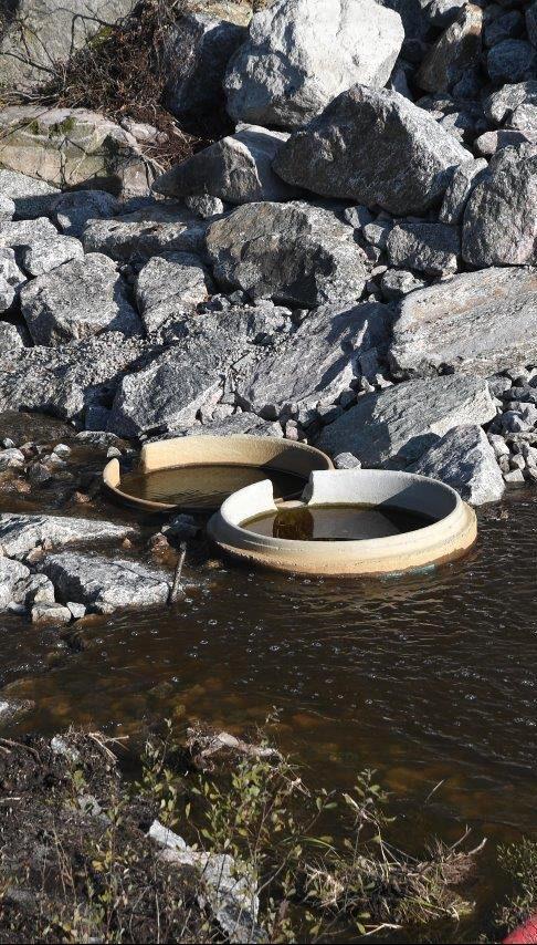 fisketrapp_kumring_foto_frode_kroglund